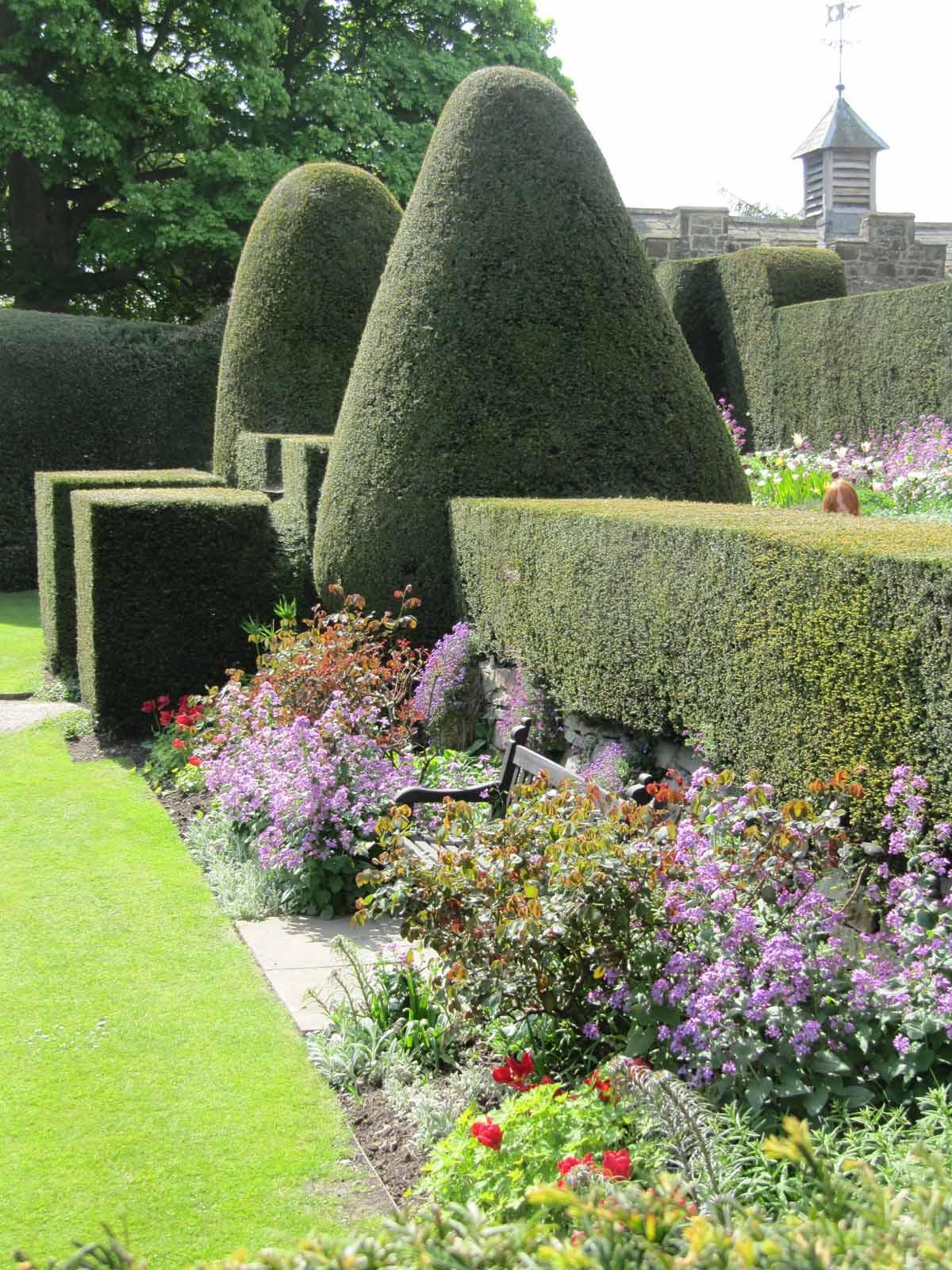 A Summers garden